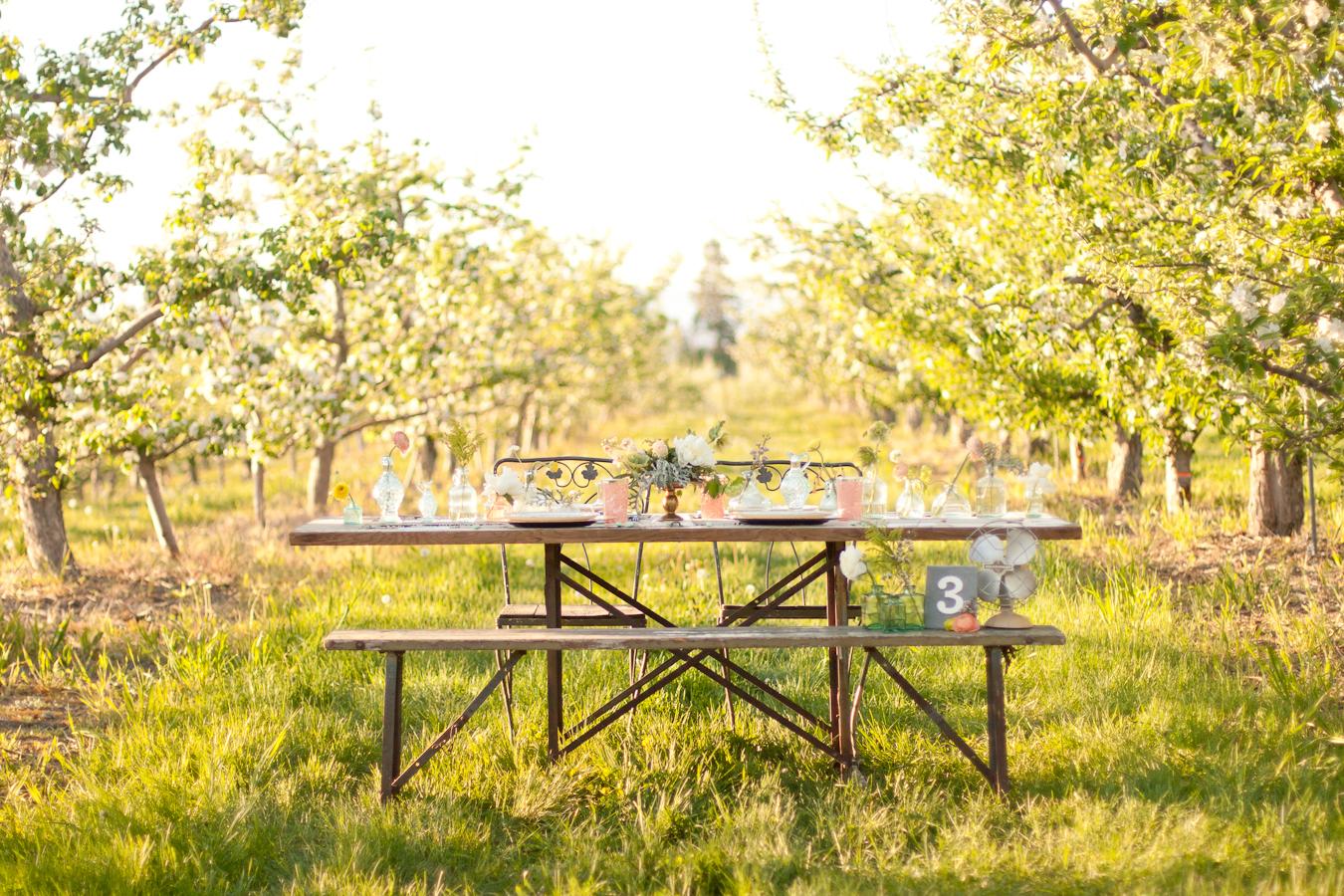 Okanagan Kelowna Photographer Orchard Wedding Barnett Photography 2